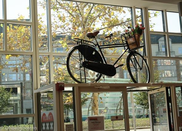 Amsterdam Falafel Shop, Fenway, Boston, MA