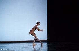 There are themes in movement as there are themes in the music that appear and reappear throughout the symphony.