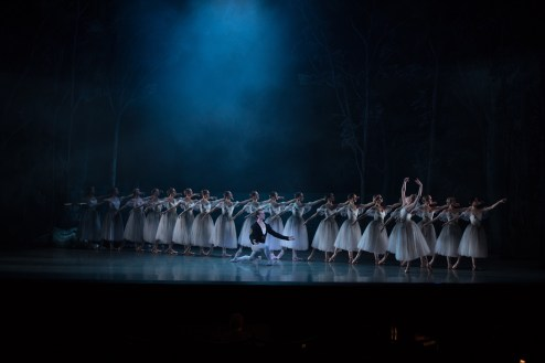 Giselle: Dancing in the Graveyard