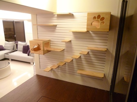 Modularna mačja plezalna stena.