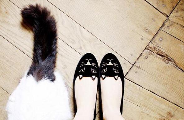 Mačje balerinke Anna Kastle