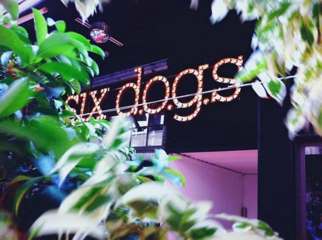 Klub Six d.o.g.s ponuja več kot petsto dogodkov letno.