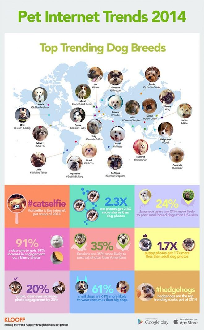 Najbolj popularne pasme po državah in druga zanimiva statistika.