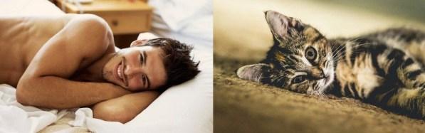 Privlačni moški in prikupne mačke