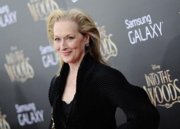 13. Meryl Streep - 8 milijonov ameriških dolarjev