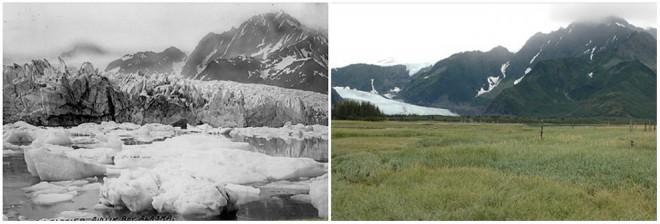 Ledenik Pedersen, Alaska. Poletje 1917 - poletje 2005