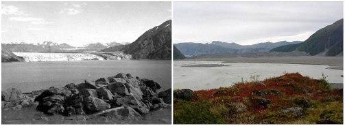 Ledenik Carroll, Alaska. Avgust 1906 - september 2003