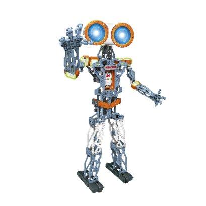 Humanoidni robot