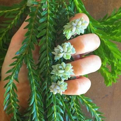 Nohti, okrašeni z rastlinami.