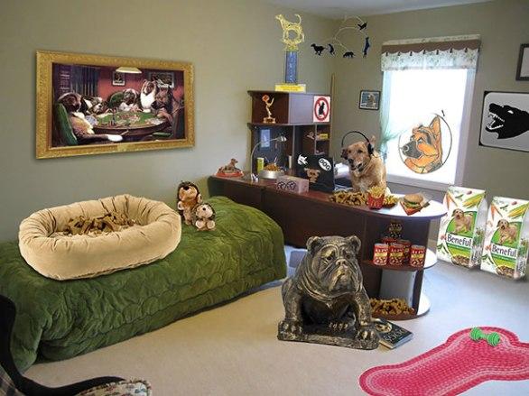 Odšel je na kolidž in oče mu je dejal, da se je v njegovo sobo preselil pes. Priložil je to fotografijo.