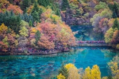 Jezero Five-Flower, Jiuzhaigou, Kitajska