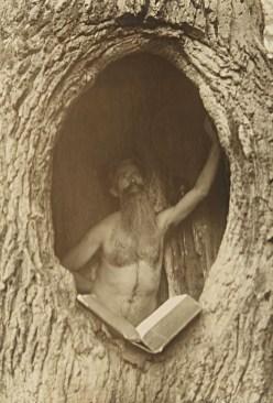 1900: Človek bere knjigo v deblu