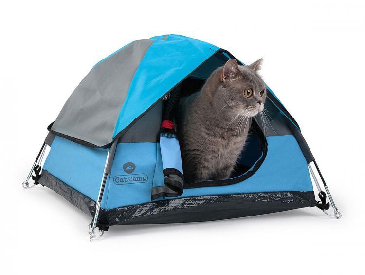 Vaša mačka bo navdušena nad novim bivališčem.