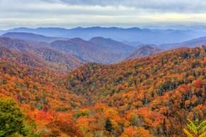 3. Narodni park Great Smoky Mountains, ZDA