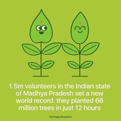 1,5 milijona indijskih prostovoljcev je postavilo nov rekord: v 12 urah so posadili 66 milijonov dreves.