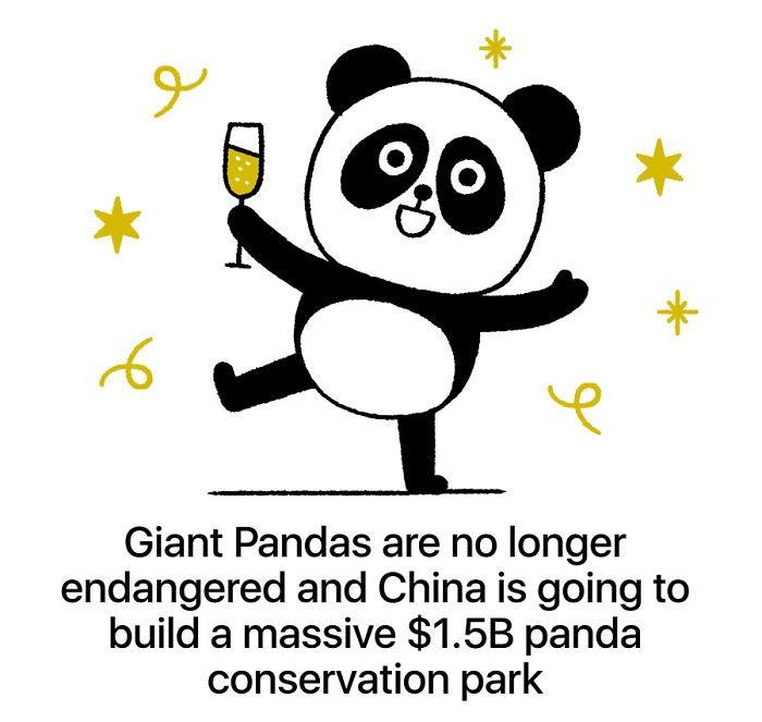 Pande niso več ogrožena živalska vrsta na Kitajskem.