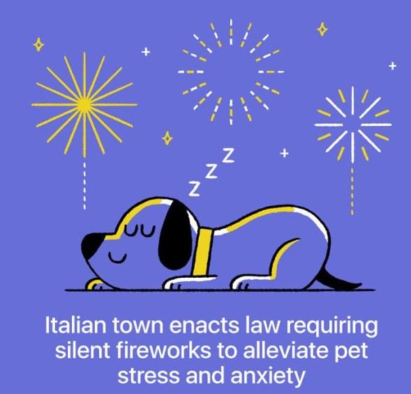 Prepovedana je uporaba glasnih pirotehničnih izdelkov zaradi stresa in utesnjenosti, ki ga ti povzročajo živalim.