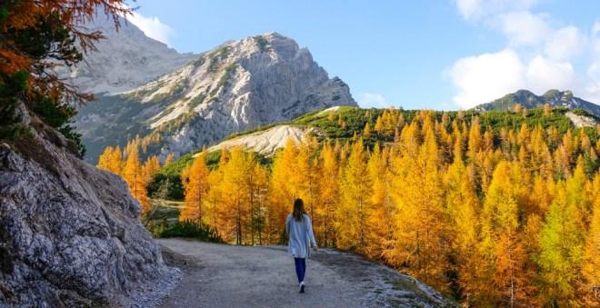 Ženske v Sloveniji v primerjavi z vsemi ženskami v državah članicah EU 28 izstopajo po visoki stopnji delovne aktivnosti.