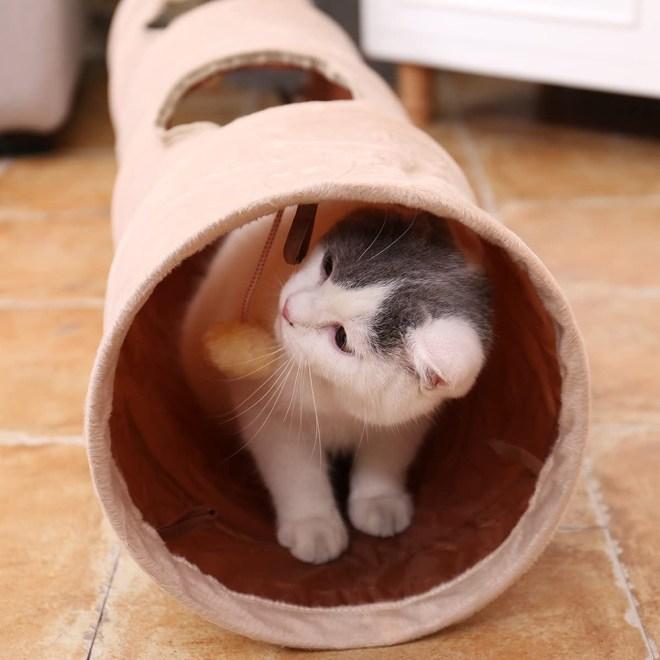 Tunel za mačko