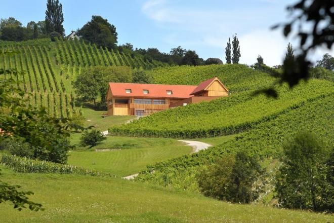 Vino + turizem Valdhuber (Foto: Booking.com)