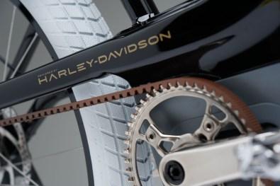 Električno kolo Harley-Davidson Serial 1