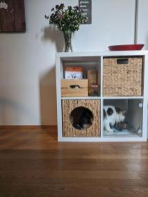 Postaja za hranjenje mačk iz regalov Kallax z razdelkom za skladiščenje hrane in posladkov Foto: Boredpanda