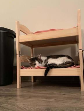 Postelja za lutke Duktig predelana v pograd za mačke Foto: Boredpanda