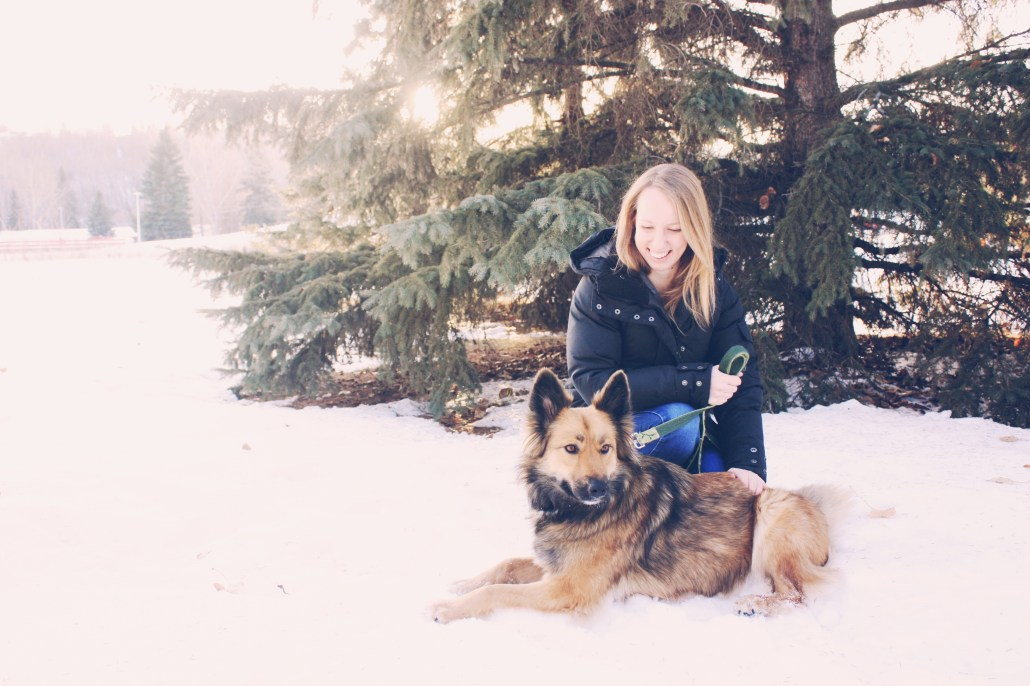 The author and her very spoiled German Shepherd-Collie rescue, Echo. Photo credit: David Christian Haylett