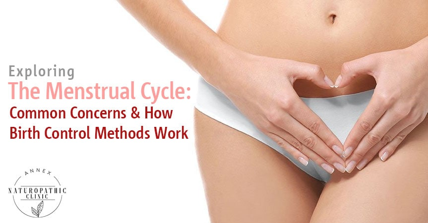 Menstrual Cycle Facts | Annex Naturopathic Clinic | Womens Health