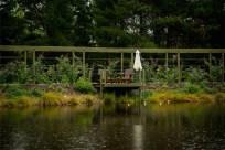140410googong garden weather-5347 copy