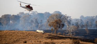 The Pialligo fire. Photo: Andrew Campbell.