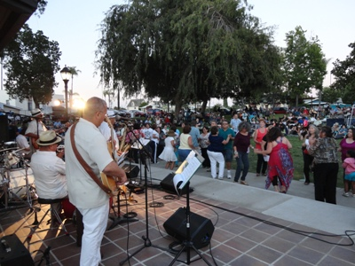 Image result for concert in the park