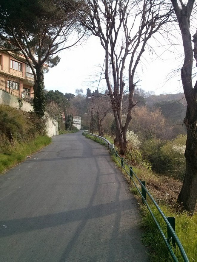 Havantepe road