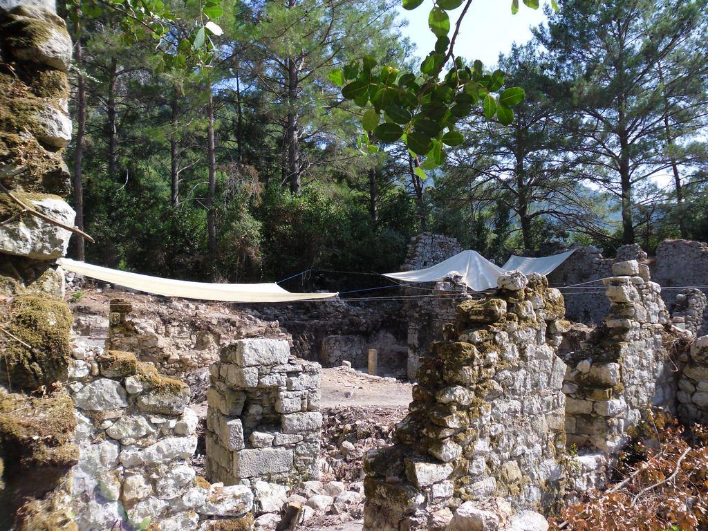 The ancient city of Olympos - 2012, Antalya, Turkey - 30