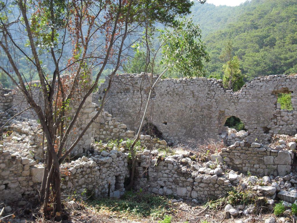 The ancient city of Olympos - 2012, Antalya, Turkey - 32