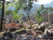 The ancient city of Olympos - 2012, Antalya, Turkey - 36