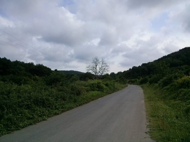 The road to Uzunya