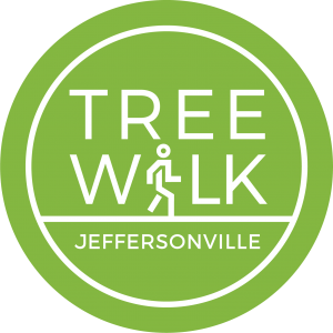 Jeff Tree Walk