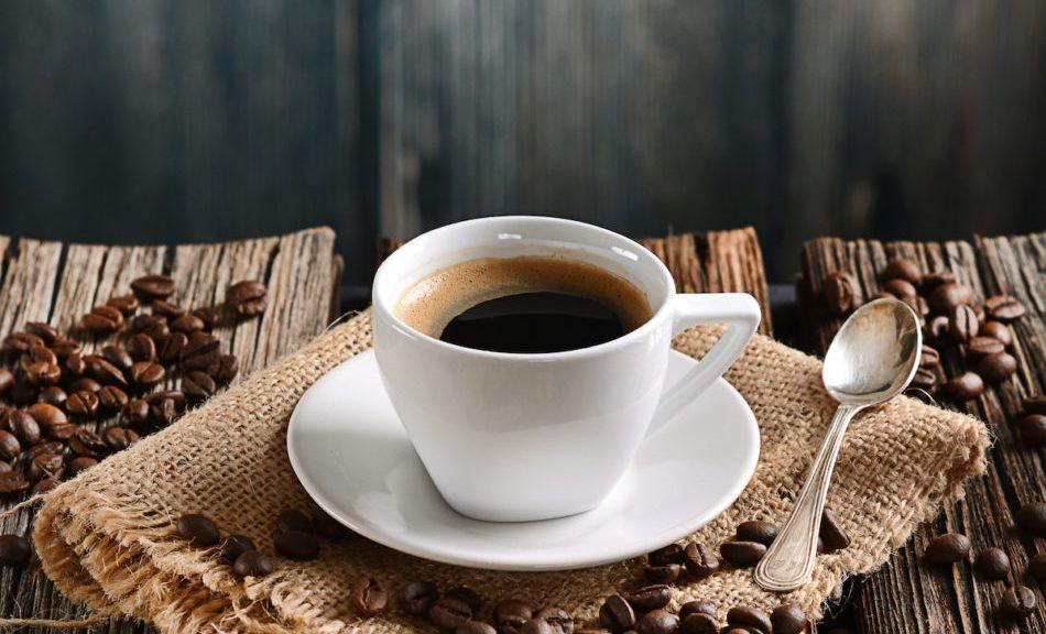 l'accademia-dove-si-studia-il-futuro-sostenibile-del-caffe