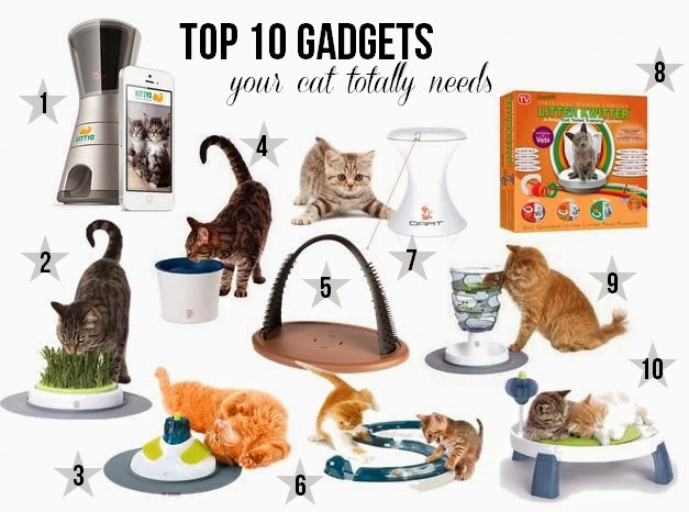Top 10 gadgets your cat needs
