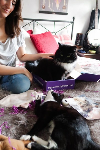The one subscription box for your cat (& you): My Purrfect Gift Box