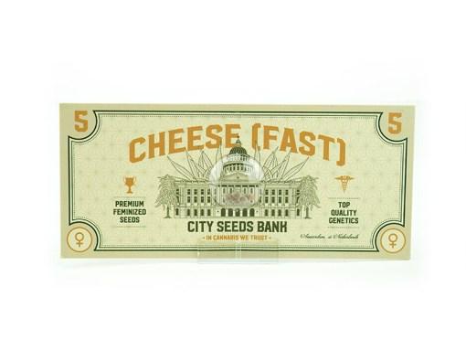 Cheese Feminised