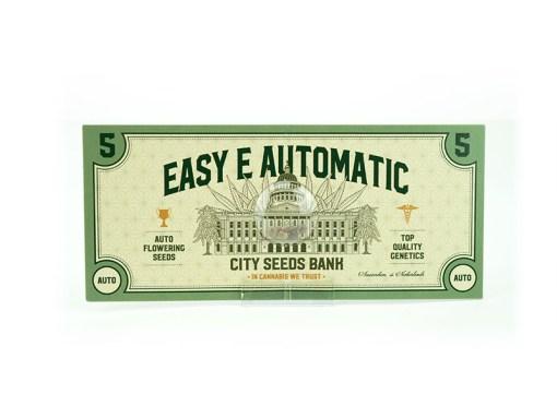 Easy E Auto
