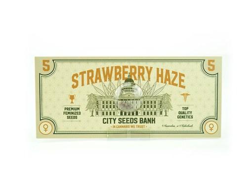 Strawberry Haze Feminised