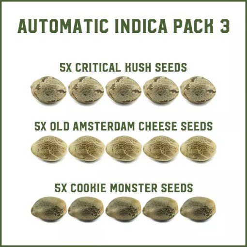 Automatic Indica Pack 3
