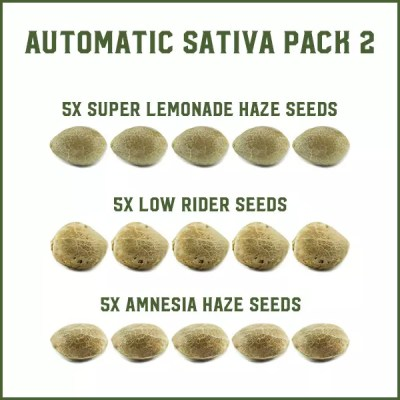 Automatic Sativa Pack 2