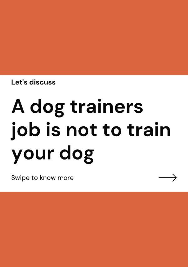 A dog trainer's job isn't what you think it is