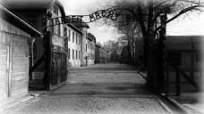 auschwitz-982498_1920