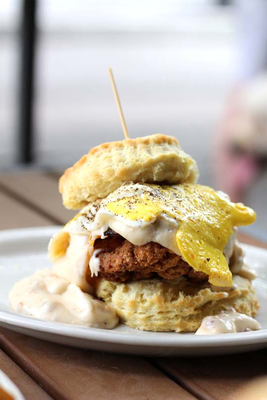 Where to Eat in Chattanooga   Chattanooga Restaurants   Travel Guide