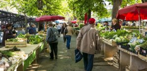 Why we need circular food systems and what cities can do about it